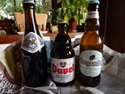 2016-04-16 beer mayo 002