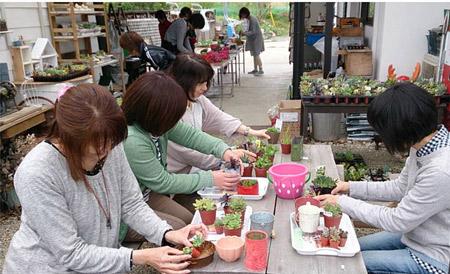 多肉植物教室