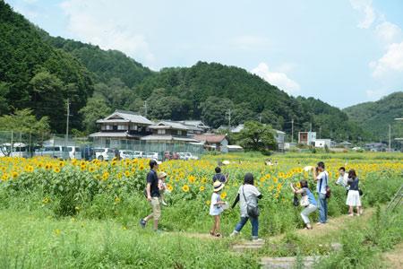 ☆DSC_3599