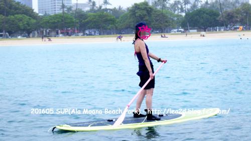 ハワイでSUP その1 ホヌさんにちょいちょい出会う海