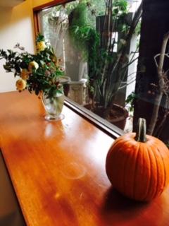 かぼちゃH28②