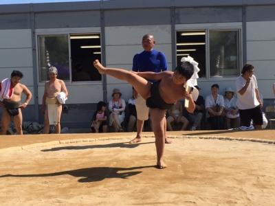 2016花相撲1