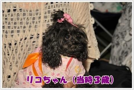 2012リコtちゃん