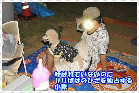 2014小鉄りりぱぱ