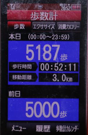 00108-31.jpg
