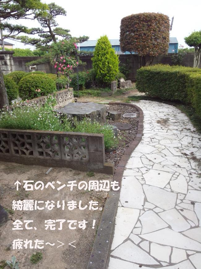 004-988765-35788-8768.jpg