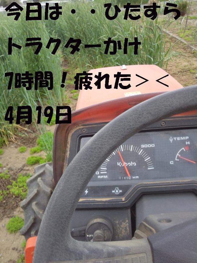 008-7654-8765-7657.jpg