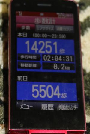 009-4-16.jpg