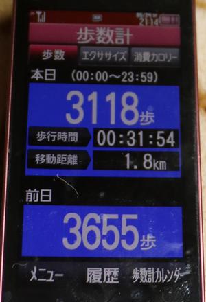 022-05-24.jpg