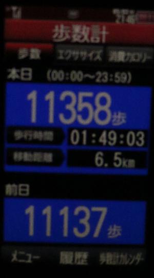 1183-05-03.jpg