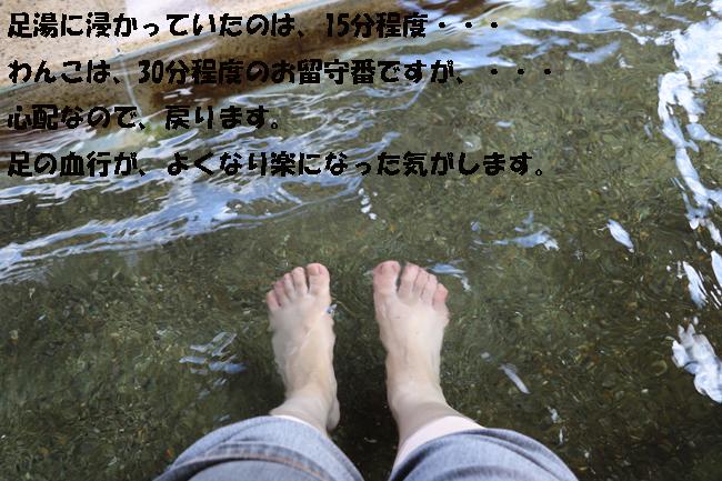 1235-8765-876547.jpg