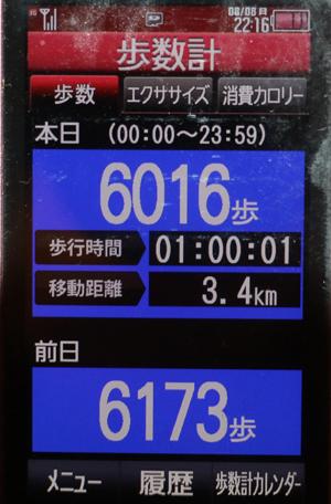 2175-08-08.jpg