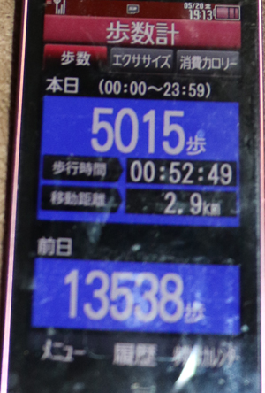 283-05-20.jpg