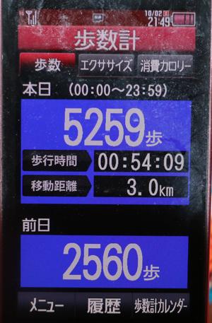 391-87654-24678-666.jpg