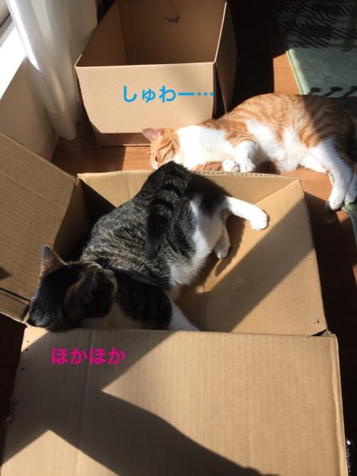 fc2blog_201605221815370b8.jpg
