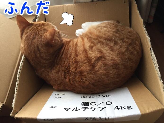 fc2blog_201607231730195a3.jpg