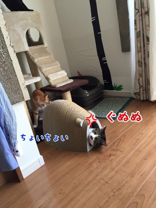 fc2blog_20160727095957166.jpg