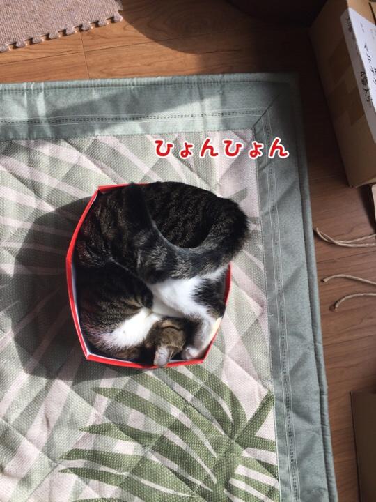 fc2blog_20161022142531791.jpg