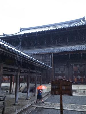 雨の妙心寺1609