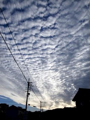秋の空の雲1610