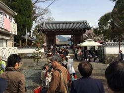 2016sasayamakasugano3