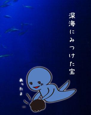 深海の宝2
