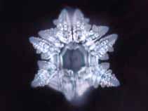 水の結晶33