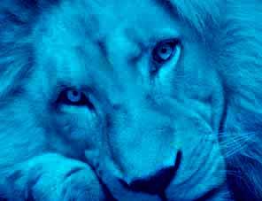 ライオン王