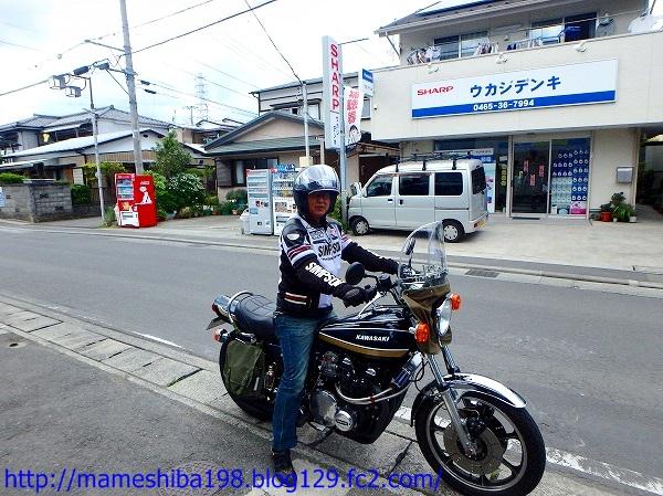 P6030140.jpg