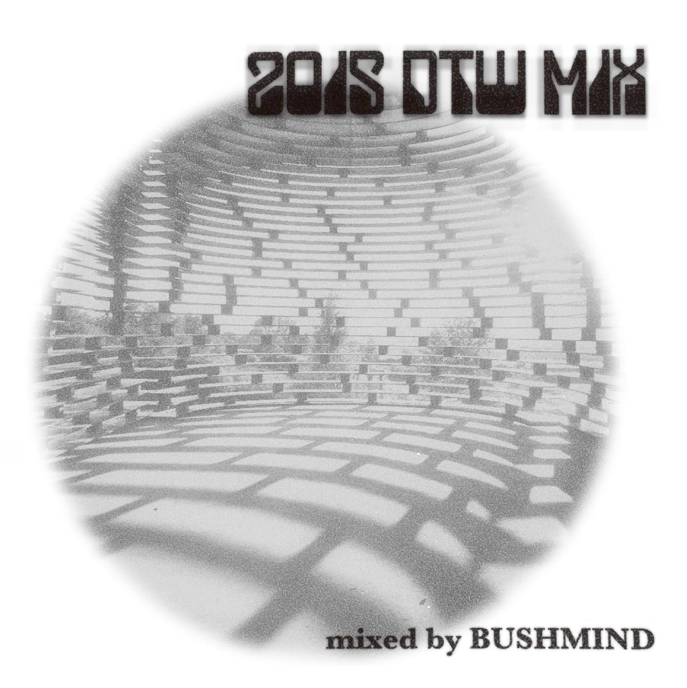 MIX CD/BUSHMIND 2015 DTW MIX MAX FREEMANの興奮冷めやらぬブッシュマインドのミックスCD到着ー!
