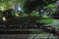 BL160804夜道3IMG_0096
