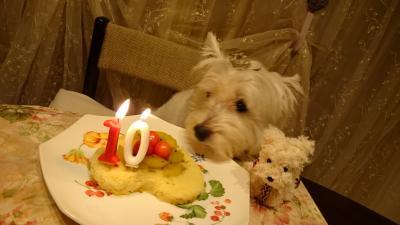 お誕生日10歳