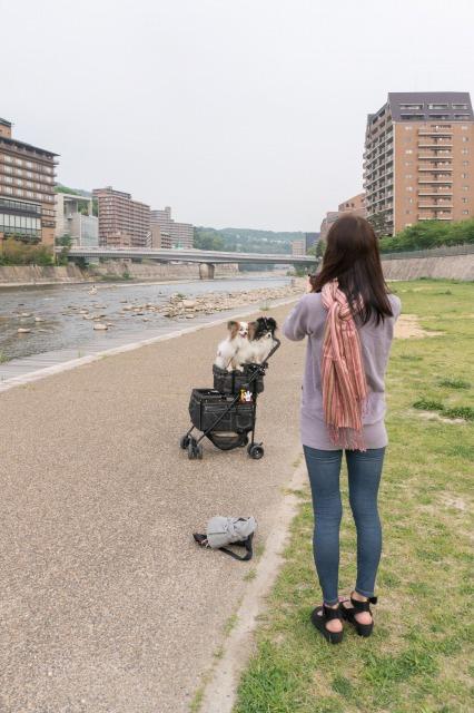 LEVINくんの朝散歩に突撃!-002