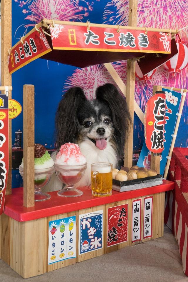 ぱんでぶーび長田店ラストオフ会【たこ焼き屋さん】-1