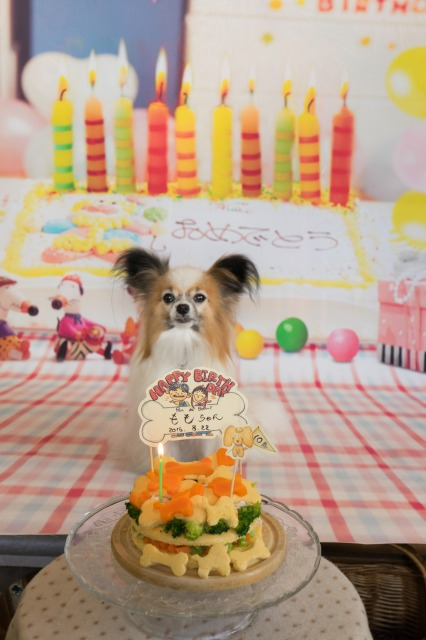 ぱんでぶーび長田店ラストオフ会【ケーキでお祝い】-006
