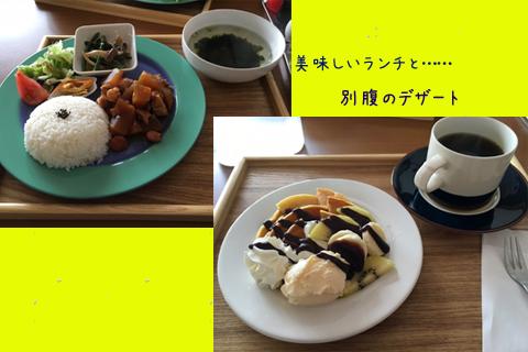 lunch_20160420202319016.jpg