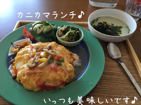 lunch_20160508194429c79.jpg