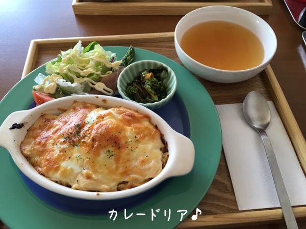 lunch_20160518204713386.jpg