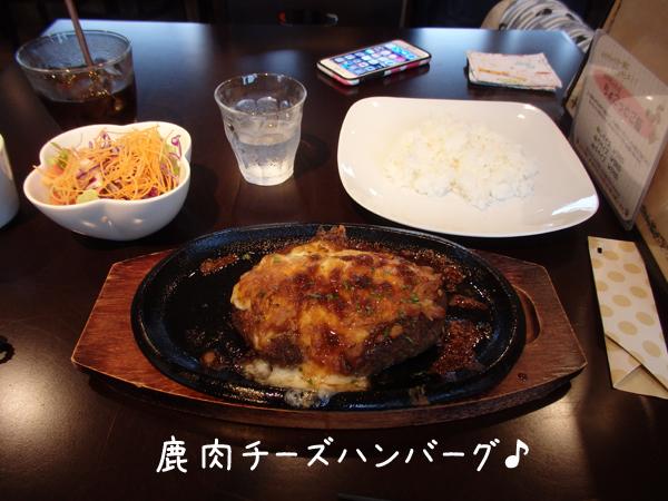 lunch_20161010163552586.jpg