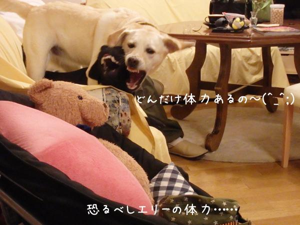 sofa_201609192245527b9.jpg