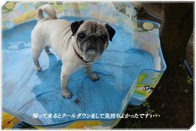 クールダウン円
