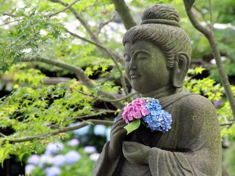 紫陽花を抱く仏像 鎌倉・長谷寺