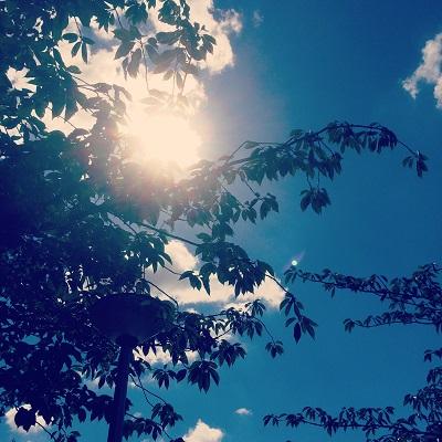 夏の日差しmini