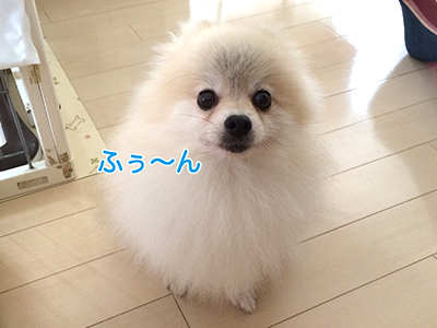 IMG_3818.jpg