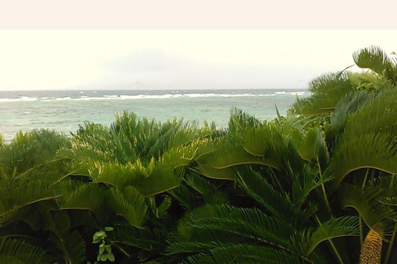 海を撮影②