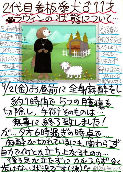 2016年9月2日(金)オペ後の広告①s