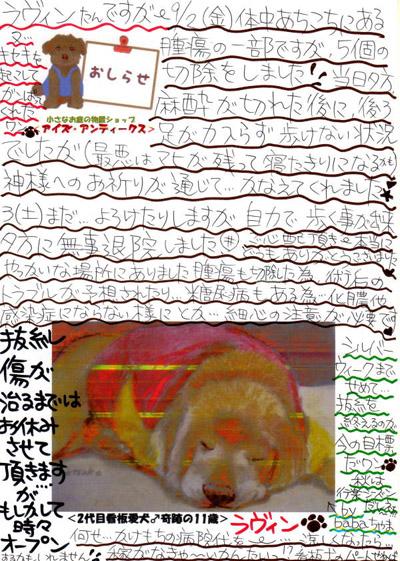 2016年9月弐日(金)オペ後の広告②s