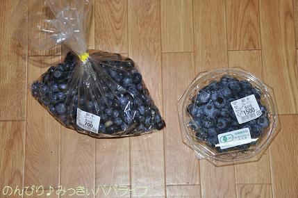 blueberry201602.jpg