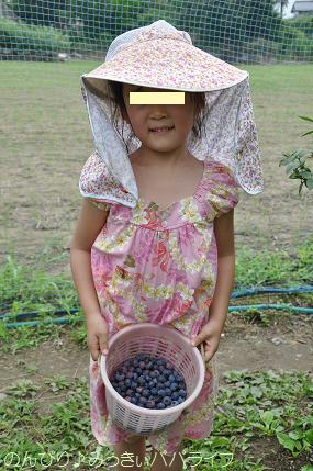 blueberrygari20160711.jpg