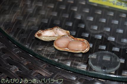 tateyama201607032.jpg